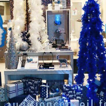 Plumes de Noël chez Audition Conseil à Istres (13)