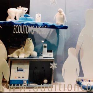 Vitrine phoques et pingouins à Martigues. Photos : tous droits réservés : (articles L 335-2 et L 716-9 du CPI)
